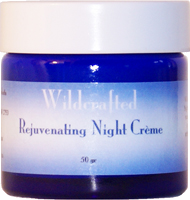 Rejuvenating Night Cream Moisturiser